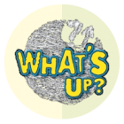 icon-whatsup-01